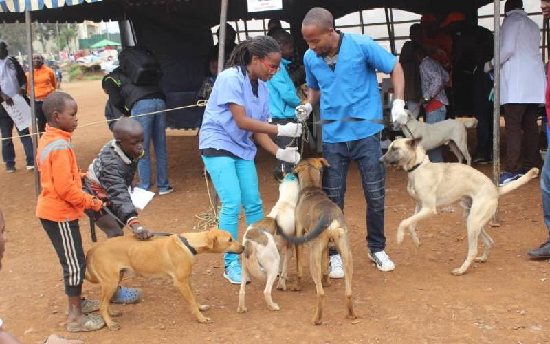 We should all be rabies ambassadors to eradicate killer disease