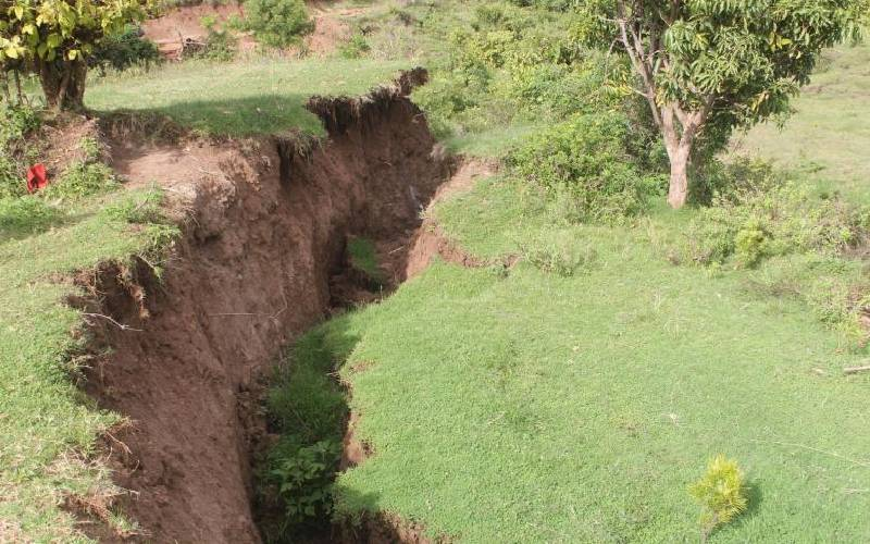 You risk a year in jail for grazing on escarpment