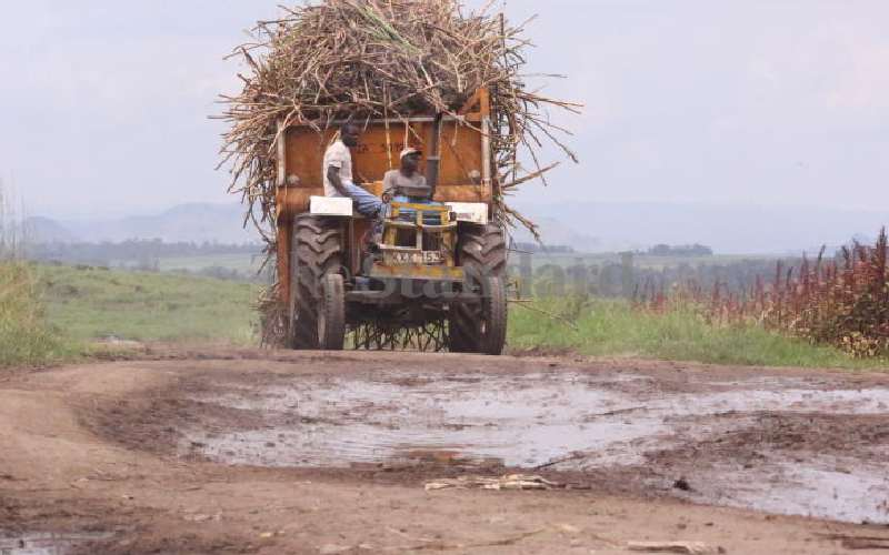 Bad roads add costs for farmers transporting cane to sugar mills