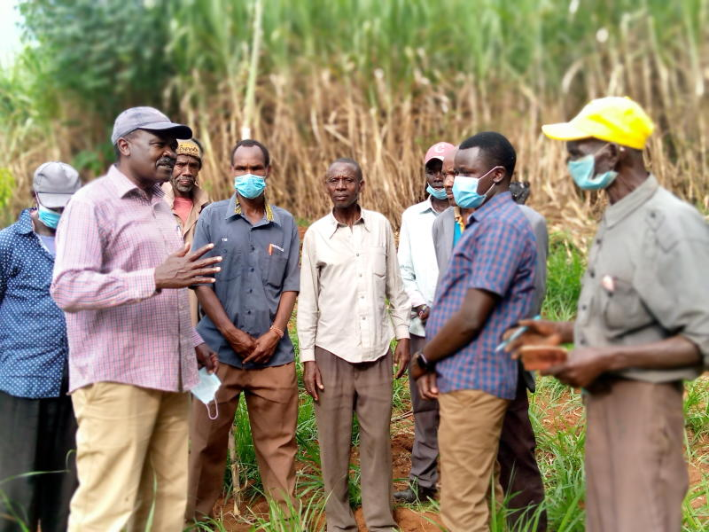 Collapse of Soin Sugar factory miller dashes hopes of Kericho farmers