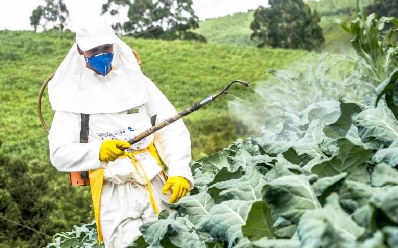 Fresh produce exporters look East as EU pesticides ban looms