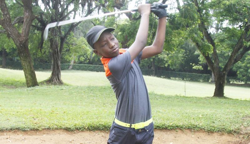 GOLF: Why Odoo is a star in the making