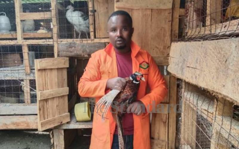 How ex-banker is making killing from ornamental birds