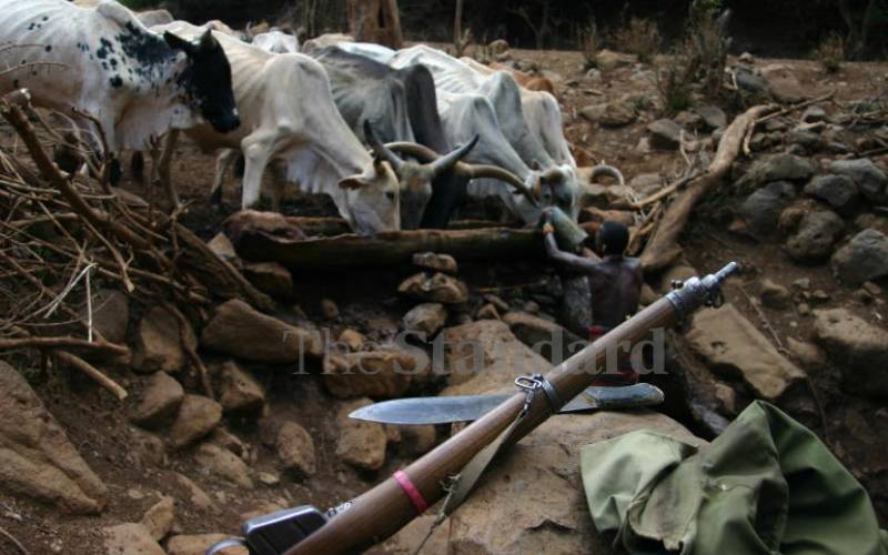 Insecurity in Marsabit County and possibilities for peace making
