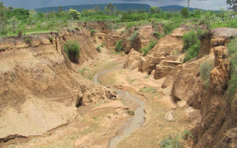 Proactive policies needed as response to climatic disasters