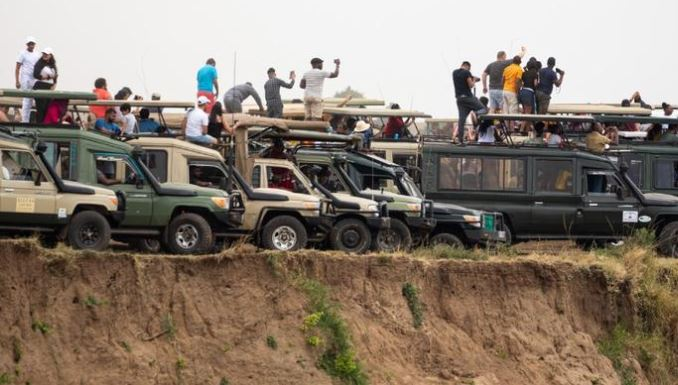 Tour companies banned from Maasai Mara for flouting park rules