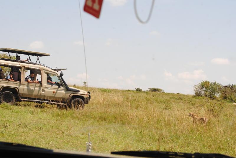 Tourists behaving badly: Visitors risking their lives at Maasai Mara