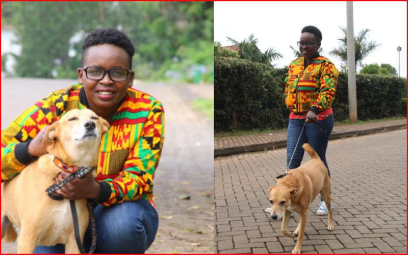 Sh1,200 per hour: Nairobi youths minting money through pet sitting