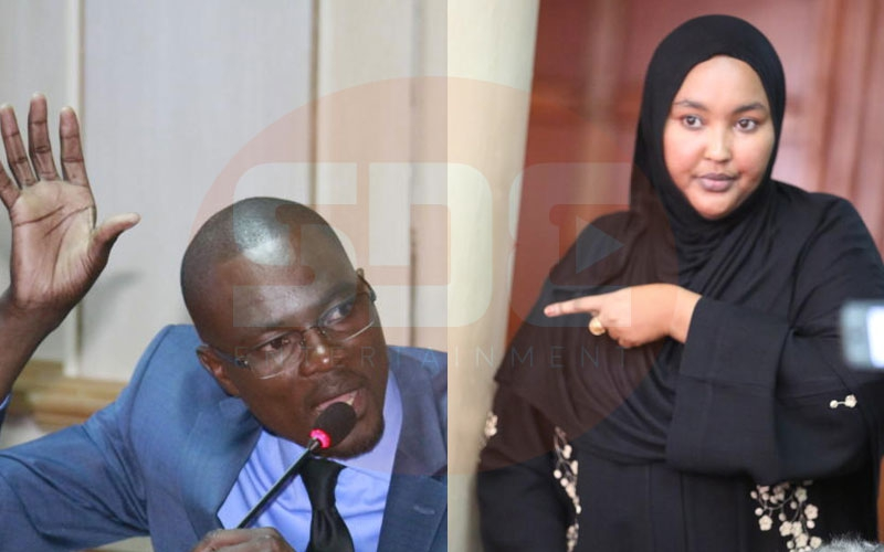 Ugly exchange: MP Didmus Barasa accuses Fatuma Gedi of 'chewing her drivers'