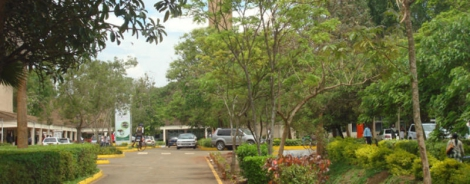 Drama as JKUAT student leaders trade punches