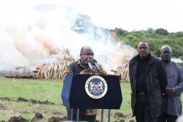 Mr President, forget setting ivory ablaze, here is what you should have burned