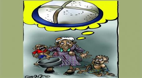 Politics of ugali: Sad irony of Kenya importing her staple food