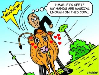 Shame as Siaya pastor is nabbed pleasuring cow