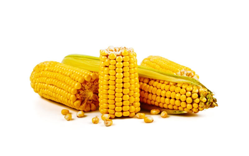 High Court frees man accused of sodomizing maize thief as punishment