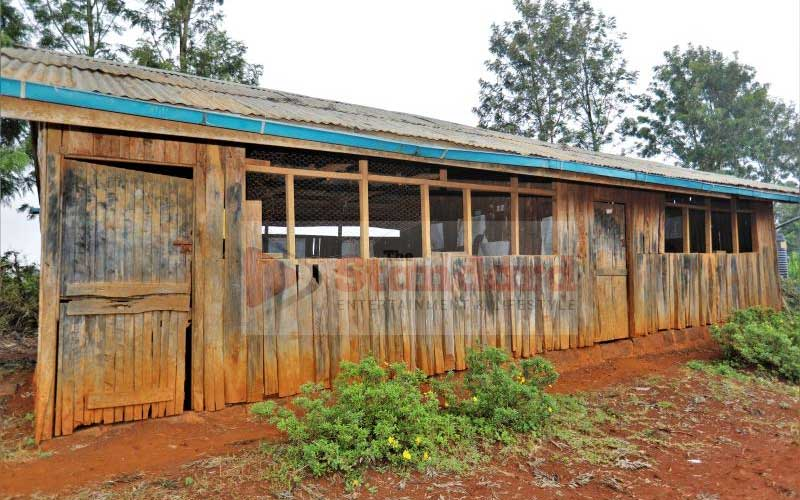 Muringato Primary School's new classrooms to replace pre-colonial horse stables