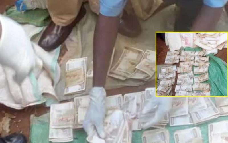 'Mad man' found with Sh275,000 at Kimilili market