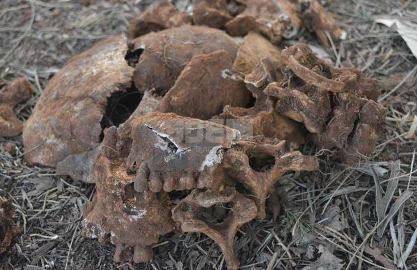 PHOTOS: Kiambu family stumble on Mau Mau skulls on their farm