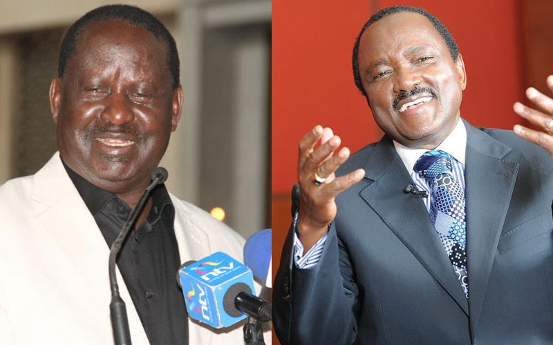 Raila, Kalonzo among 13 senior retirees to earn billions