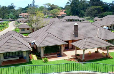 Where Raila, Ruto live: Welcome to five posh millionaires' playgrounds