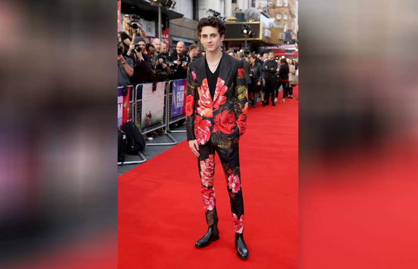 'Call Me By Your Name' star Timothée Chalamet