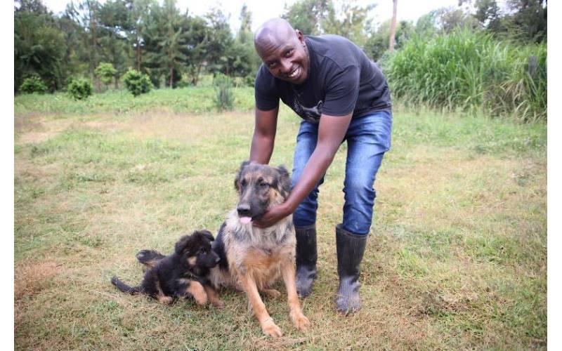 Raphael Kithinji: I left a good job to go rear dogs