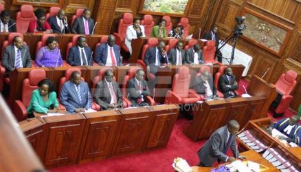 Senate should play its role to prop devolution