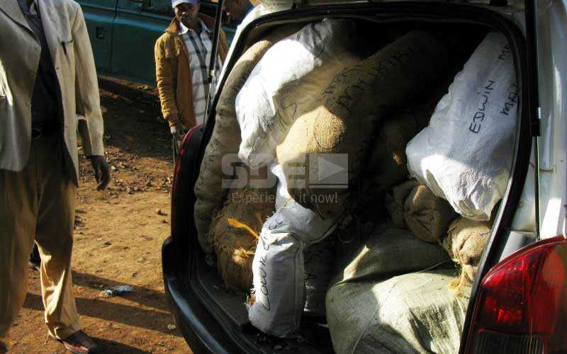 Muguka Probox: The speeding killer coffins of Meru