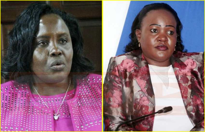 Drama as two senators exchange blows in fight over committee post