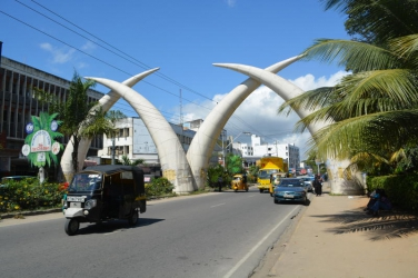 Get rid of these bats, they are bad omen - Mombasa residents claim