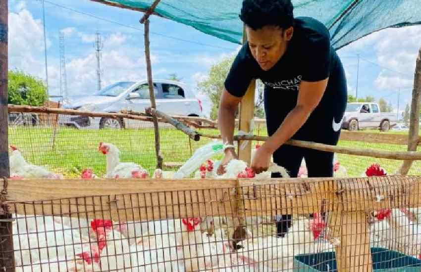 Socialite ventures into chicken farming, reveals why