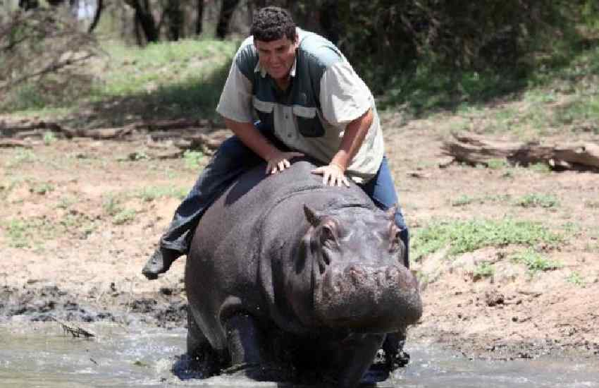 Man mauled to death by pet hippo he described as 'like a son'
