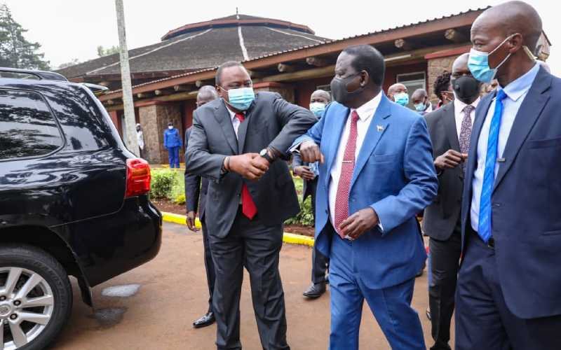 Raila rubbishes talk that referendum will cost Sh14billion
