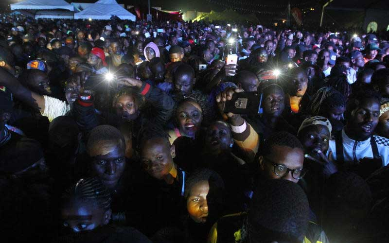 Fans during Wasafi Festival