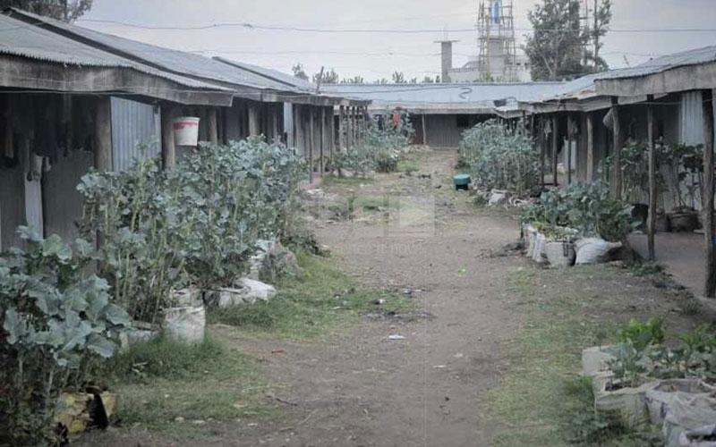 Kwa Uhuru: The mabati estate in Kitengela the Kenyattas own