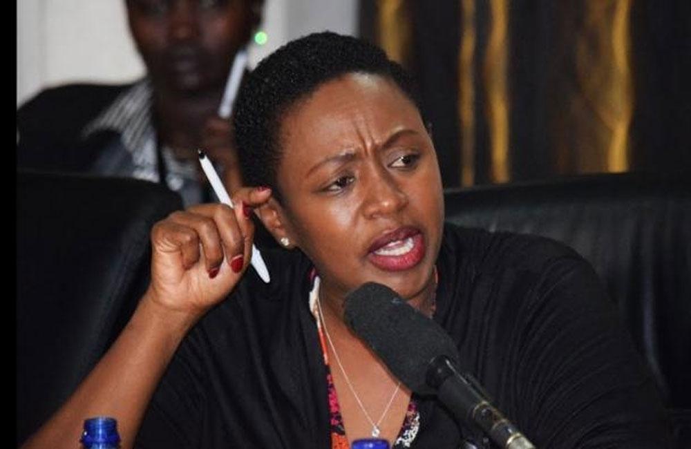 Male MPs find Sabina Chege's dress code disturbing