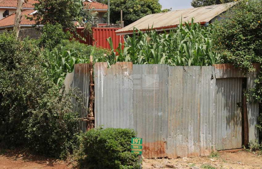 Did woman hack husband, strangle two children at Thome estate?
