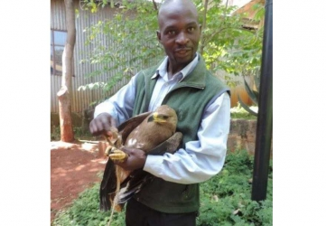 Unlocking the puzzle: Strange Russian bird that flew 5700km landed at Makongeni police station, Kenya