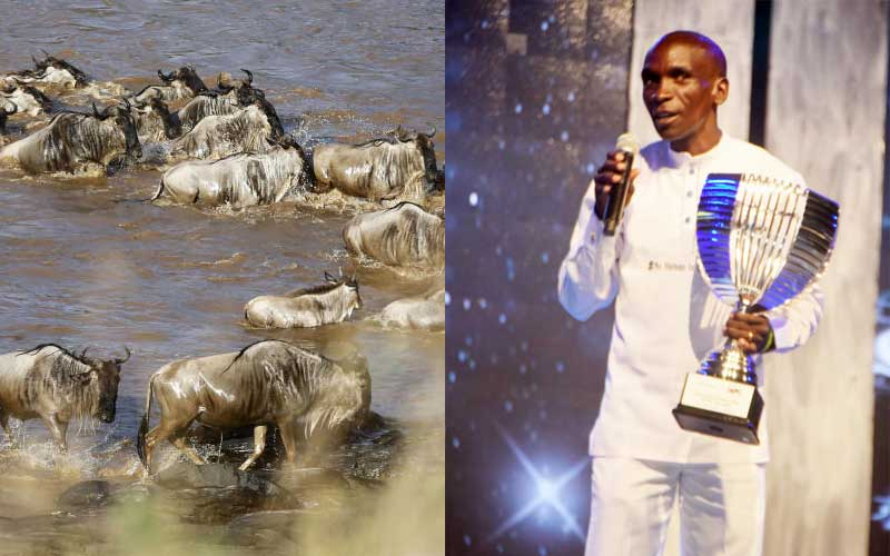 Wildebeest migration: Eliud Kipchoge to spend this weekend at Maasai Mara