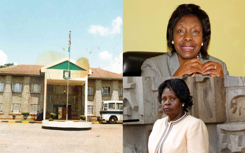 Alliance Girls: Where Charity Ngilu, Lucy Kibaki wore green skirts