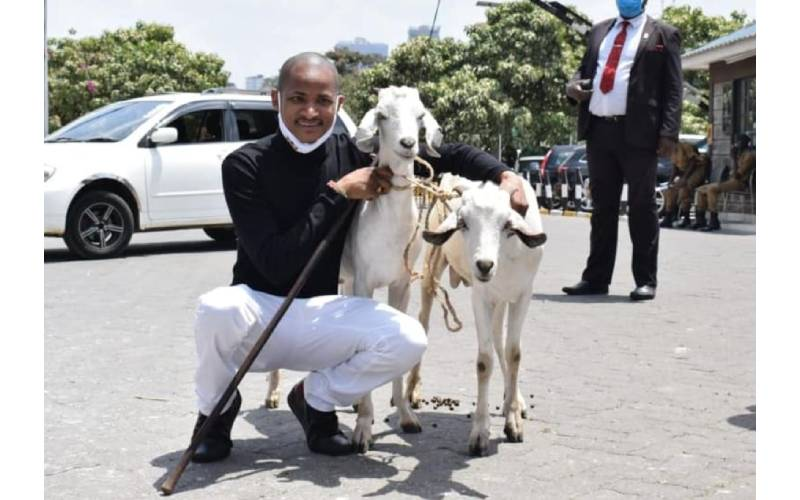 Babu Owino names two goats after Raila and Uhuru, Kenyans react