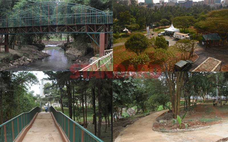 How John Michuki clean-up labour blossomed into a spectacular city park