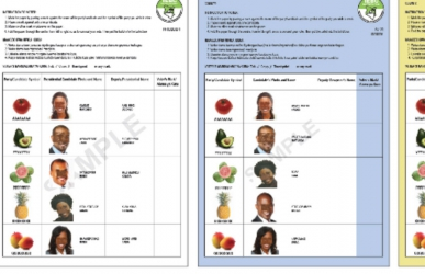 Kuchezwa? How much Kenyans are paying for each ballot paper as compared to other countries in East Africa