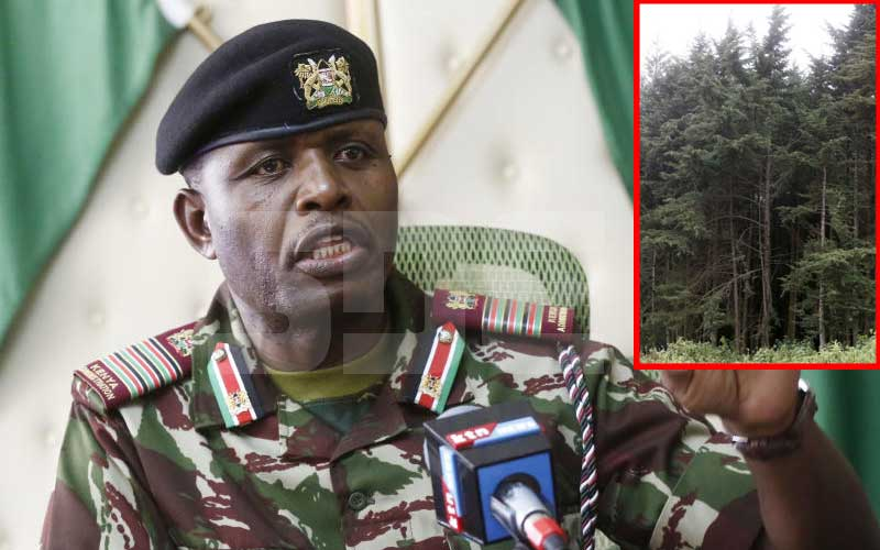 Regional Commissioner George Natembeya linked to 10,000 acres in Mau Forest by witness