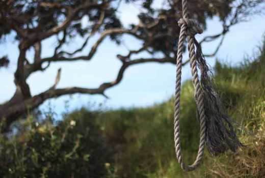 Decomposing body of Chuka University student found dangling from a tree