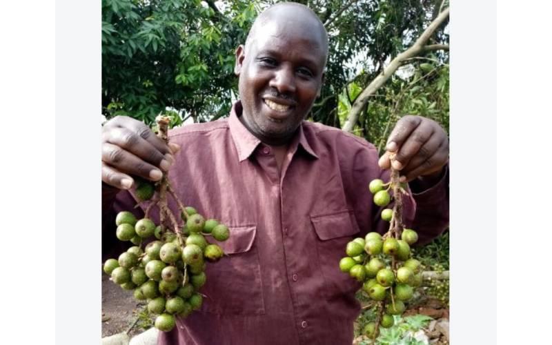 Curtains fall on Kalenjin Sabbath music pioneer Willy Korir