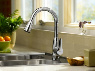 A kitchen tap is 44 times dirtier than a toilet seat