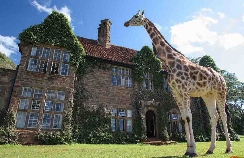 Giraffe Manor responds to claims of discrimination at hotel