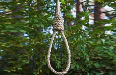 Suicide? Primary school pupil found hanging on a tree