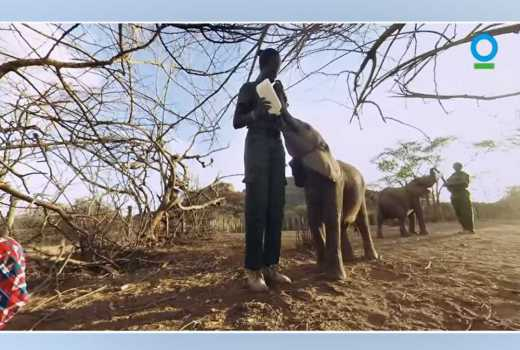 Lupita's virtual reality film puts remote Samburu in global spotlight