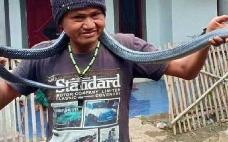 Man strangled to death while trying to bathe python